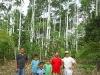familia-en-bosque-1