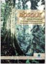 El-bosque-en-el-ecuador