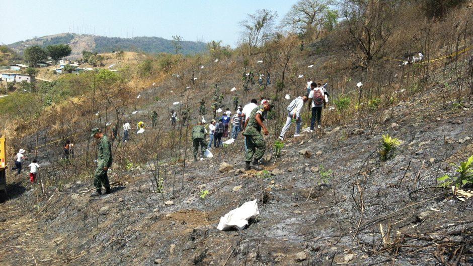 """Linde """"Adopta un Bosque"""" en el Cerro Paraíso provincia del Guayas"""