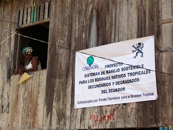 Sistemas de Manejo sostenible para los bosques nativos tropicales secundarios y degradados del Ecuador